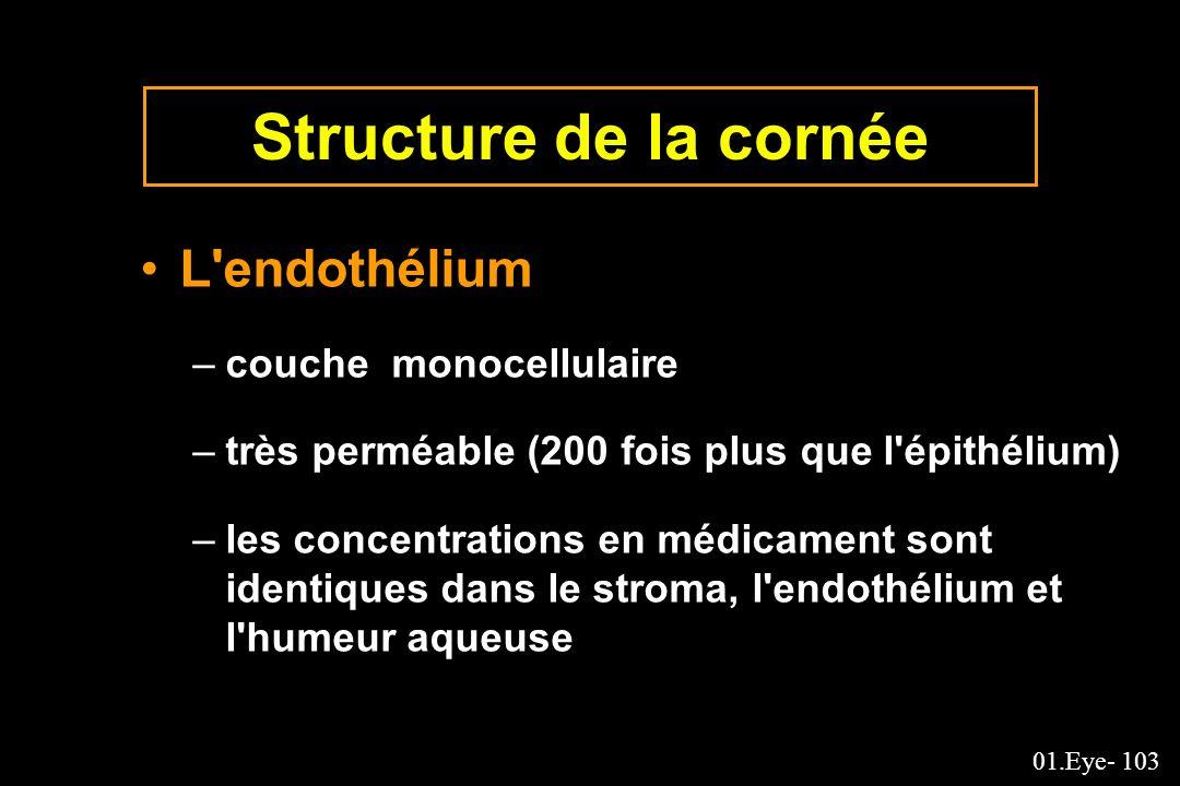 01.Eye- 103 Structure de la cornée L'endothélium –couche monocellulaire –très perméable (200 fois plus que l'épithélium) –les concentrations en médica