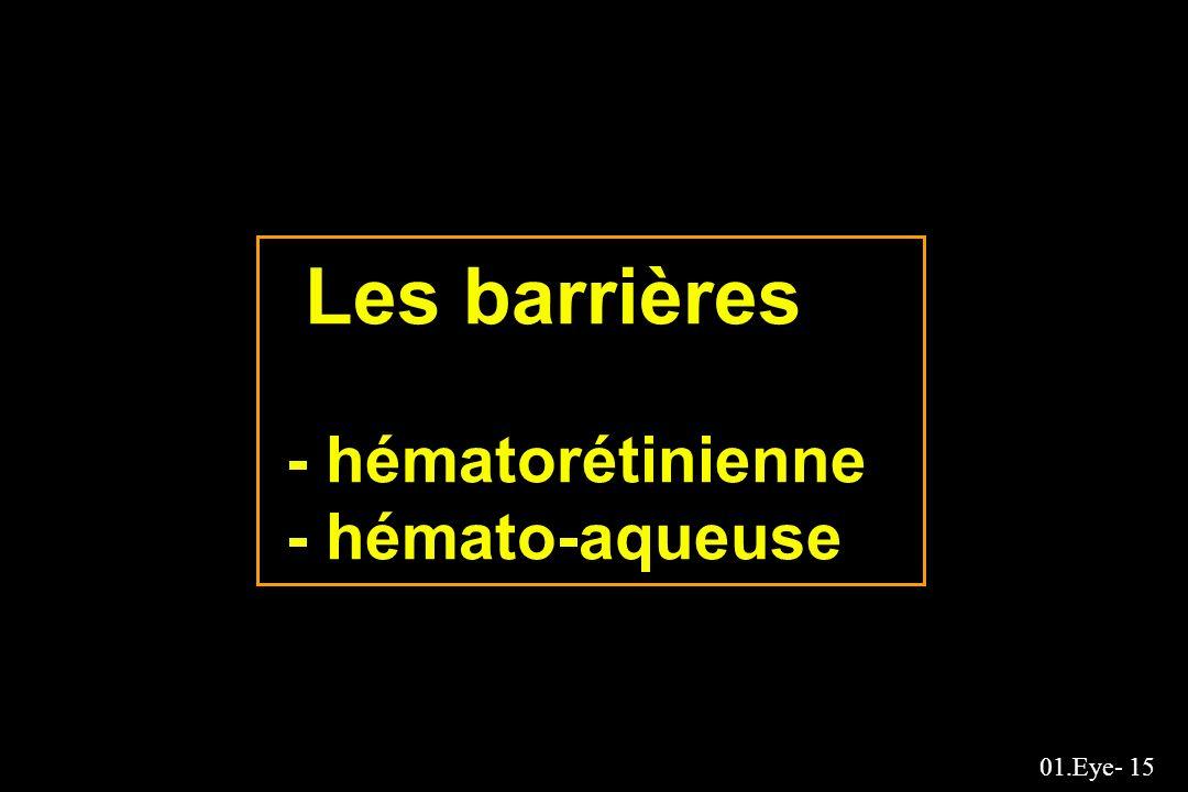 01.Eye- 15 Les barrières - hématorétinienne - hémato-aqueuse