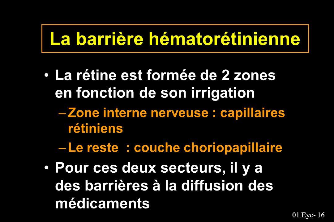 01.Eye- 16 La barrière hématorétinienne La rétine est formée de 2 zones en fonction de son irrigation –Zone interne nerveuse : capillaires rétiniens –