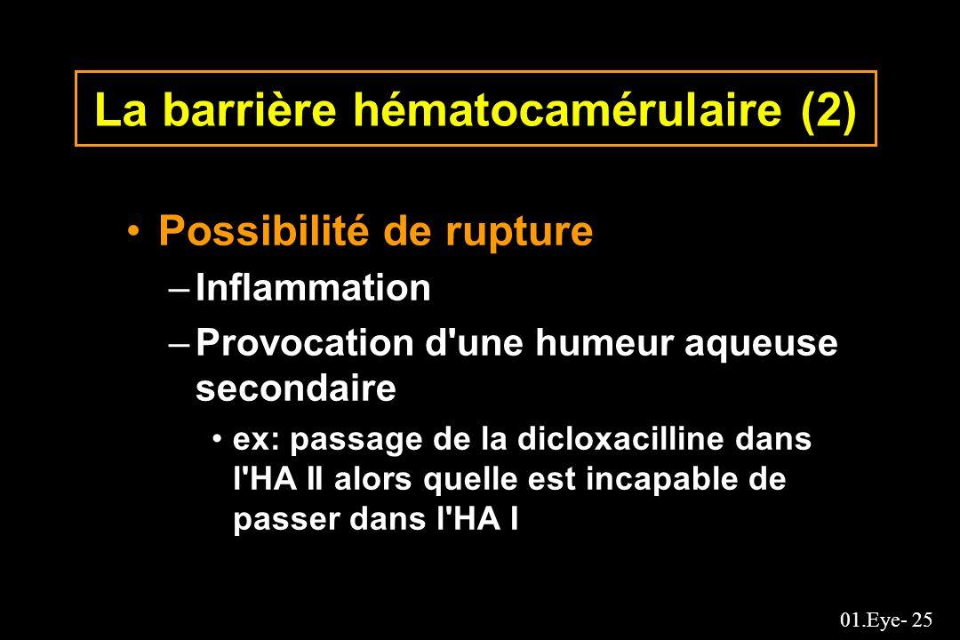 01.Eye- 25 La barrière hématocamérulaire (2) Possibilité de rupture –Inflammation –Provocation d'une humeur aqueuse secondaire ex: passage de la diclo