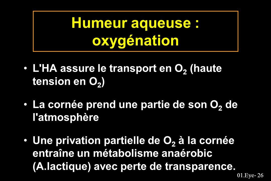 01.Eye- 26 Humeur aqueuse : oxygénation L'HA assure le transport en O 2 (haute tension en O 2 ) La cornée prend une partie de son O 2 de l'atmosphère