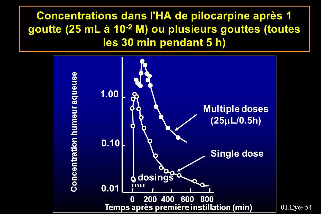01.Eye- 54 Concentrations dans l'HA de pilocarpine après 1 goutte (25 mL à 10 -2 M) ou plusieurs gouttes (toutes les 30 min pendant 5 h) Concentration