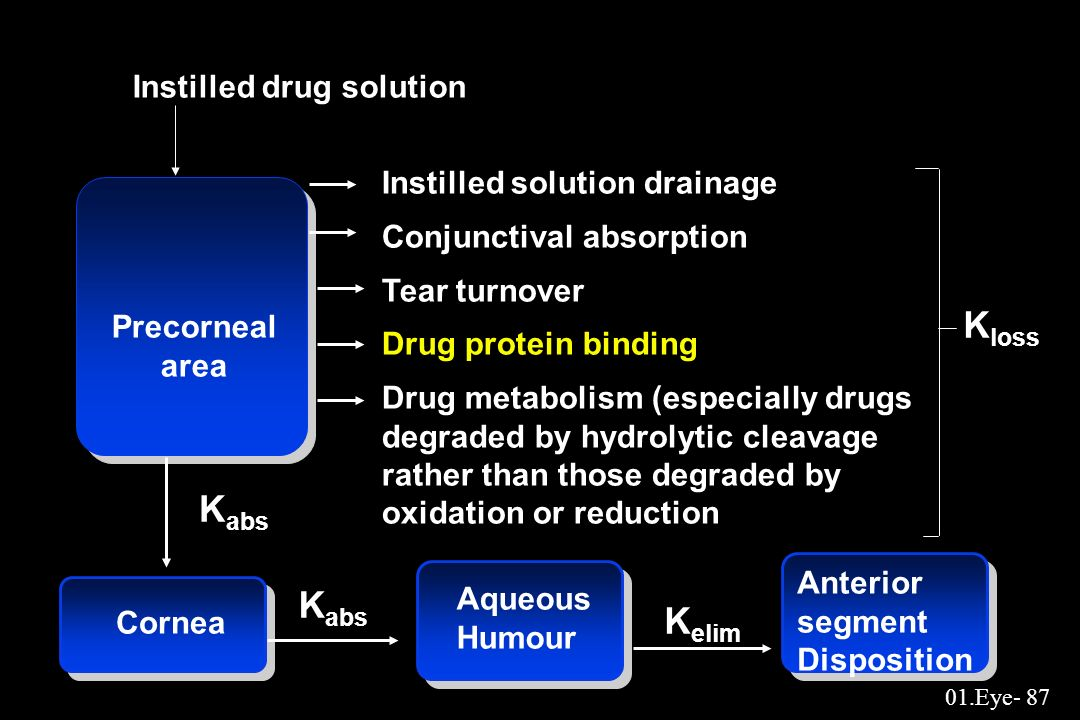 01.Eye- 87 Instilled drug solution Instilled solution drainage Conjunctival absorption Tear turnover Drug protein binding Drug metabolism (especially
