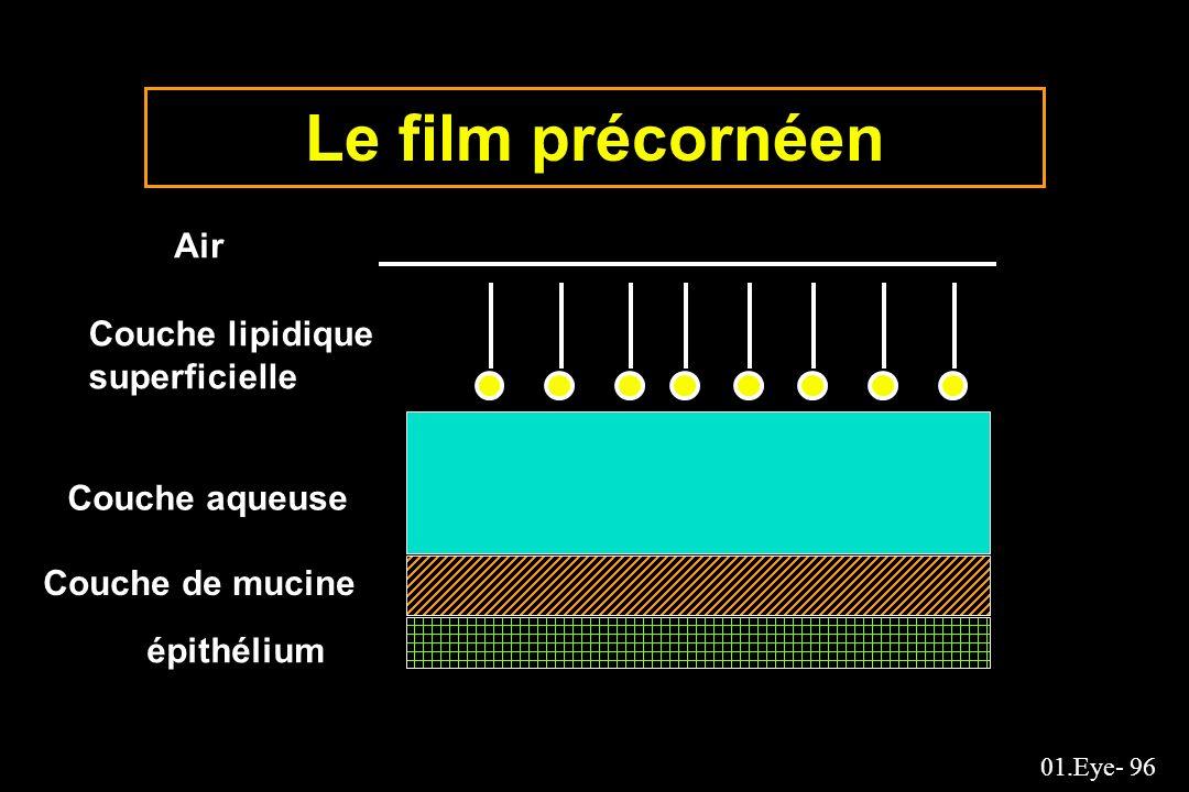 01.Eye- 96 Le film précornéen Air Couche lipidique superficielle Couche aqueuse Couche de mucine épithélium