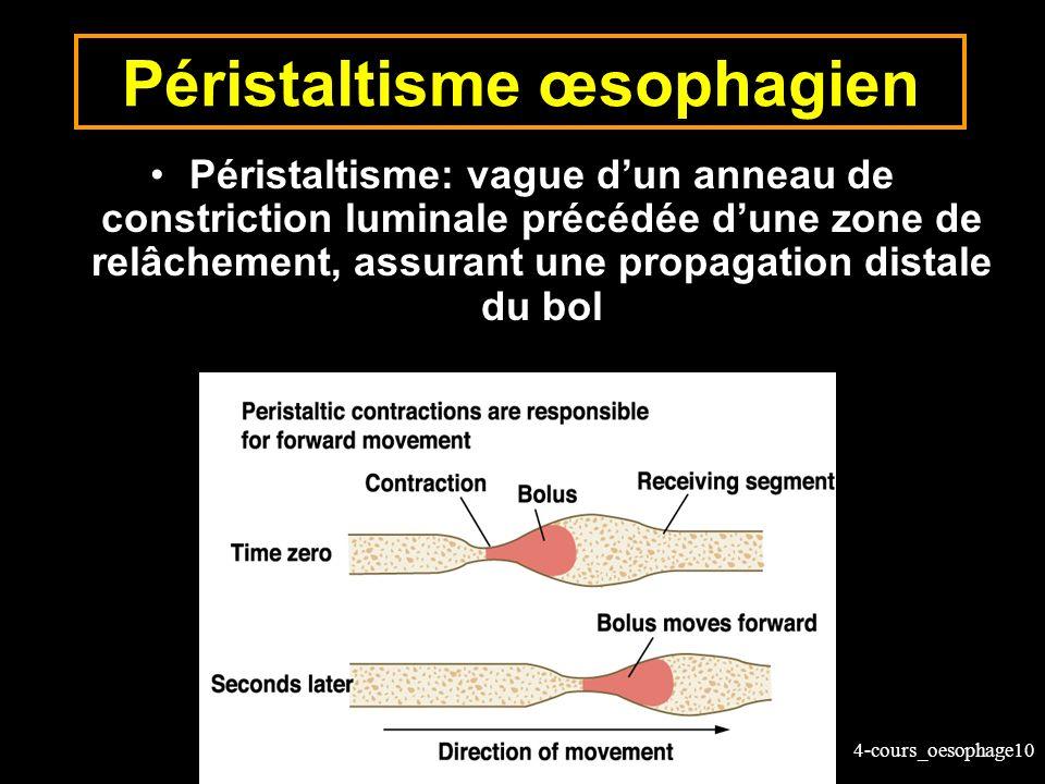 4-cours_oesophage10 Péristaltisme œsophagien Péristaltisme: vague dun anneau de constriction luminale précédée dune zone de relâchement, assurant une