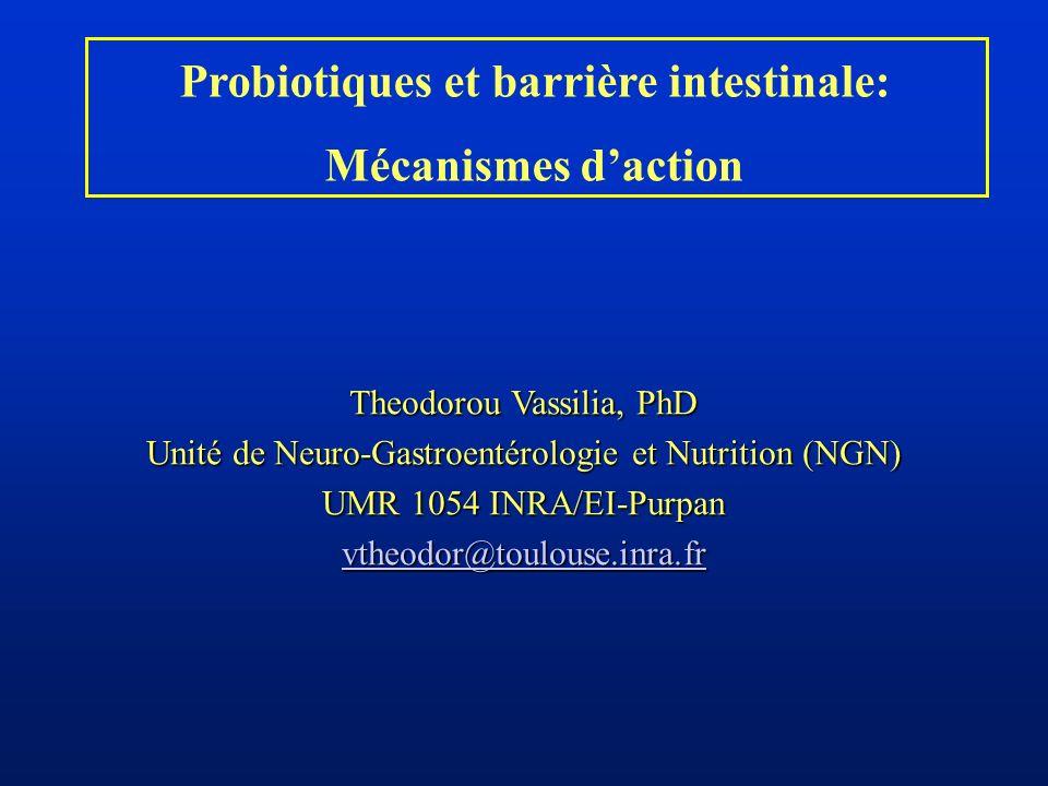 Probiotiques et barrière intestinale: Mécanismes daction Theodorou Vassilia, PhD Unité de Neuro-Gastroentérologie et Nutrition (NGN) UMR 1054 INRA/EI-