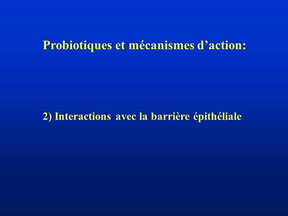Probiotiques et mécanismes daction: 2) Interactions avec la barrière épithéliale