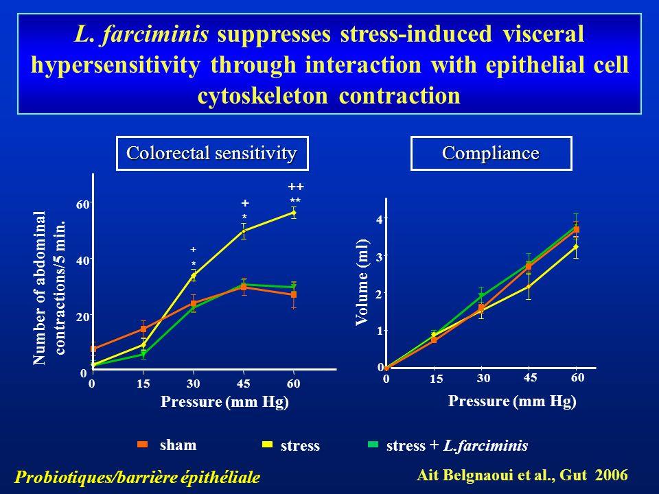 015304560 0 20 40 60 sham stressstress + L.farciminis * ** ++ + Pressure (mm Hg) Number of abdominal contractions/5 min. 0 15 30 45 60 0 1 2 3 4 Press