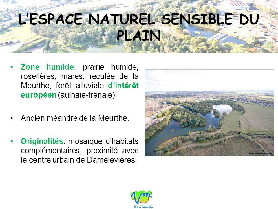 LESPACE NATUREL SENSIBLE DU PLAIN Zone humide: prairie humide, roselières, mares, reculée de la Meurthe, forêt alluviale dintérêt européen (aulnaie-fr
