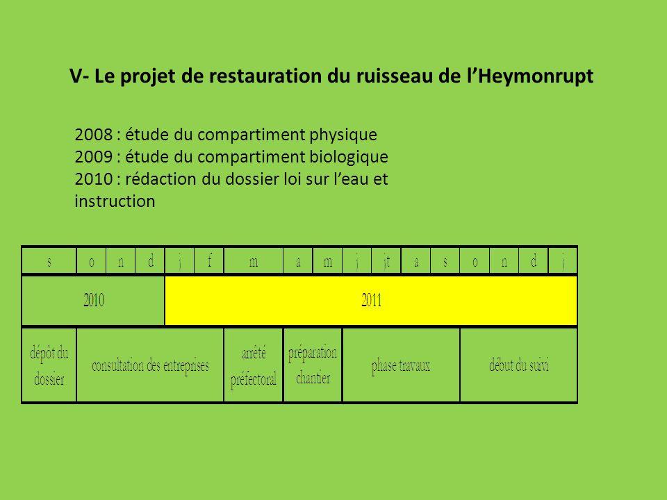 V- Le projet de restauration du ruisseau de lHeymonrupt 2008 : étude du compartiment physique 2009 : étude du compartiment biologique 2010 : rédaction