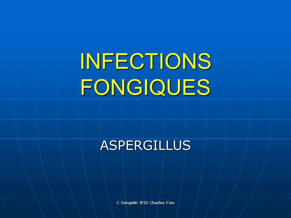 C Sengelin IFSI Charles Foix Rôle de lenvironnement