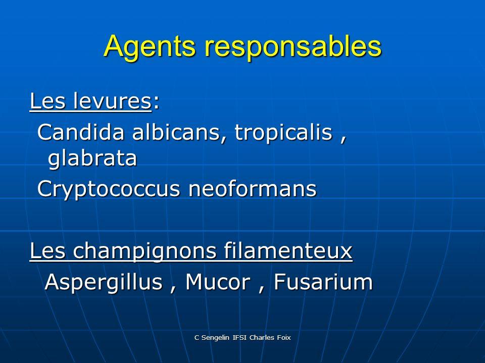 C Sengelin IFSI Charles Foix Infections fongiques nosocomiales Elles représentent 9% des IN ( NNISS 1986-1990) Elles représentent 9% des IN ( NNISS 19