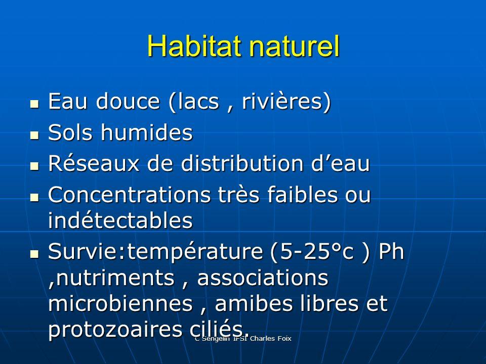 C Sengelin IFSI Charles Foix Diagnostic par culture culture en milieu spécifique: BCYE- fer, L-cystéine, charbon culture en milieu spécifique: BCYE- f