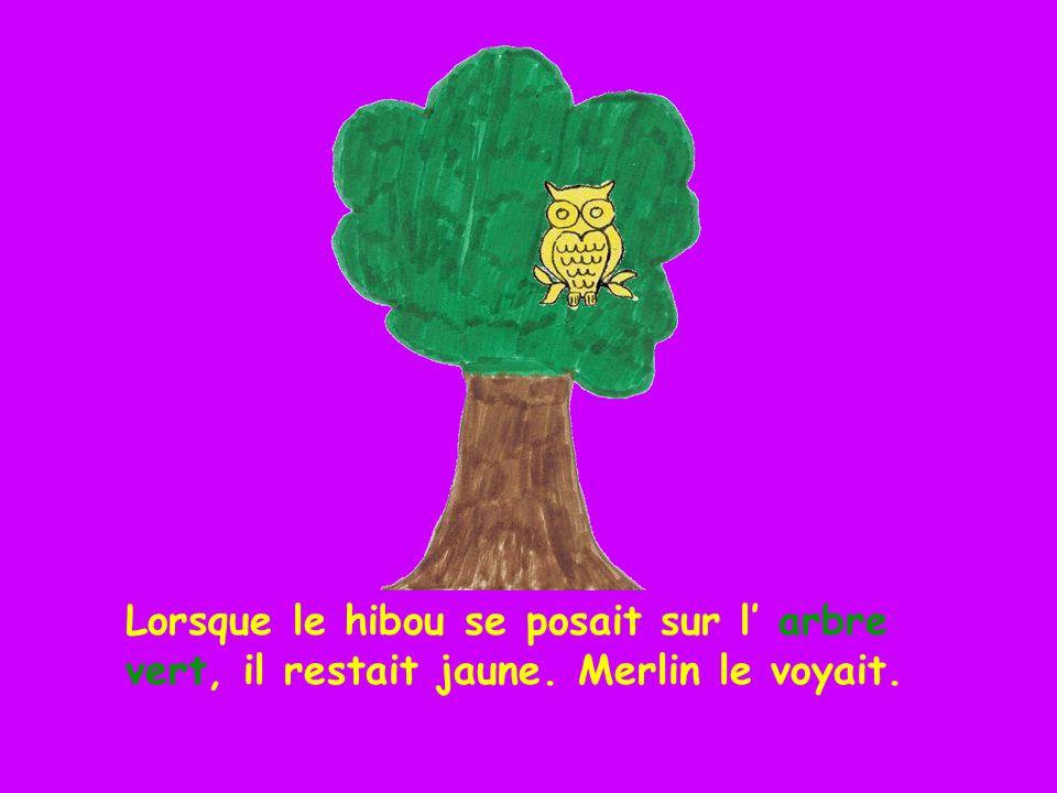Lorsque le hibou se posait sur le fauteuil rouge, il restait jaune. Merlin le voyait.