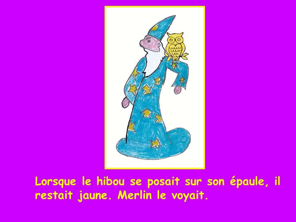 Lorsque le hibou se posait sur l arbre vert, il restait jaune. Merlin le voyait.