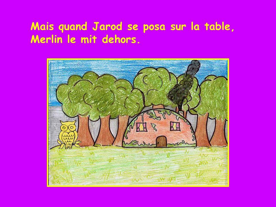 Lorsque le hibou se posait sur son épaule, il restait jaune. Merlin le voyait.