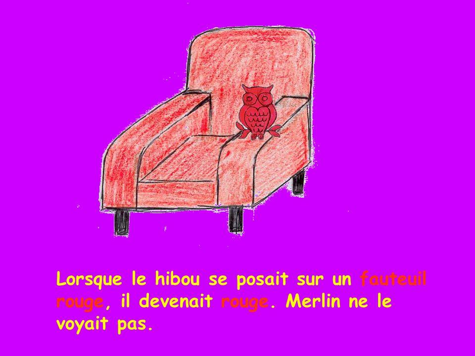 Lorsque le hibou se posait sur un fauteuil rouge, il devenait rouge. Merlin ne le voyait pas.