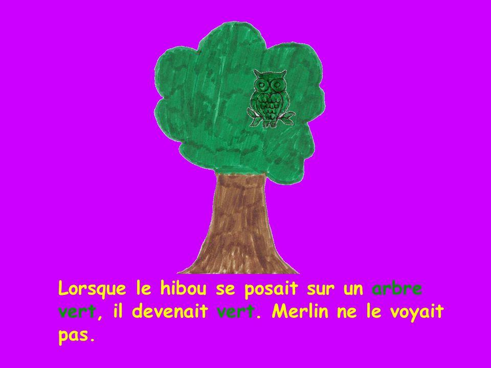 Lorsque le hibou se posait sur un arbre vert, il devenait vert. Merlin ne le voyait pas.
