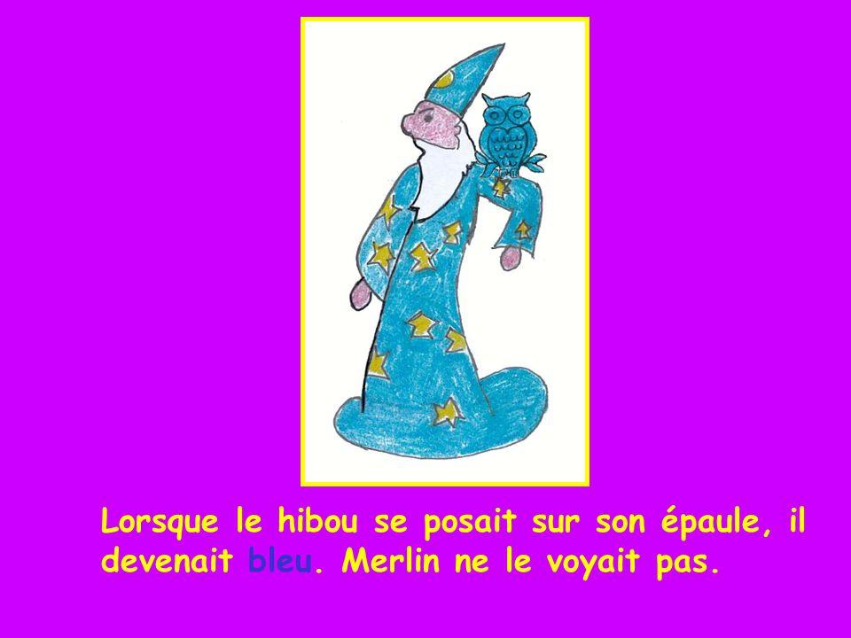 Lorsque le hibou se posait sur son épaule, il devenait bleu. Merlin ne le voyait pas.