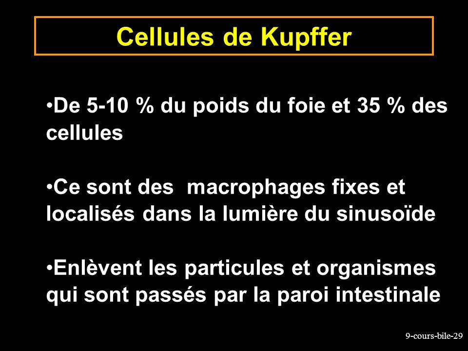 9-cours-bile-29 De 5-10 % du poids du foie et 35 % des cellules Ce sont des macrophages fixes et localisés dans la lumière du sinusoïde Enlèvent les p