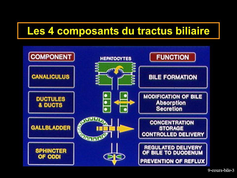 9-cours-bile-44 Composition de la bile hépatique Eau: 97% (87% dans la VB) Électrolytes: idem à plasma Acides biliaires (et leurs sels): – 1.5% des 3% de la matière sèche de la bile Phospholides (lécithine) et Cholestérol (rendu soluble par les sels biliaires et la lécithine), Déchets : Produits de dégradation de lhémoglobine –pigments biliaires donnant à la bile sa couleur
