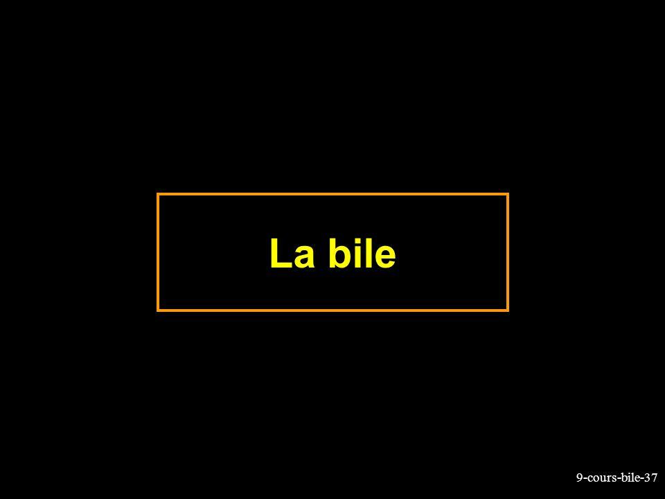 9-cours-bile-37 La bile