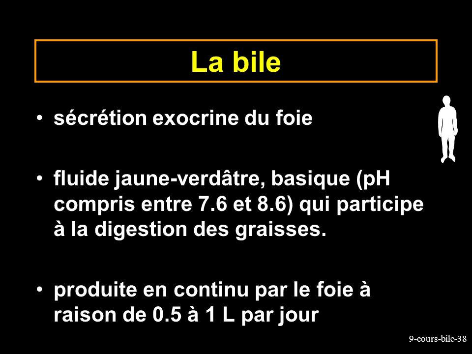 9-cours-bile-38 La bile sécrétion exocrine du foie fluide jaune-verdâtre, basique (pH compris entre 7.6 et 8.6) qui participe à la digestion des grais