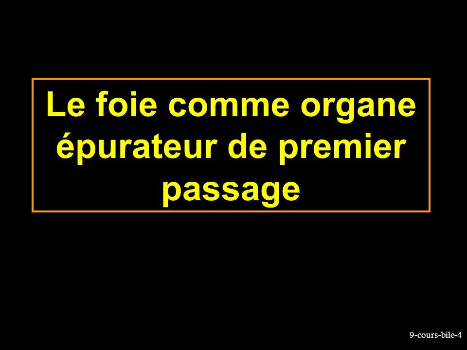 9-cours-bile-4 Le foie comme organe épurateur de premier passage