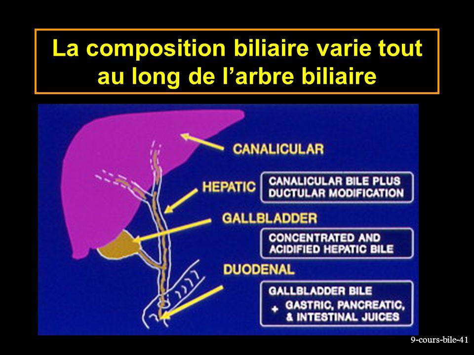 9-cours-bile-41 La composition biliaire varie tout au long de larbre biliaire