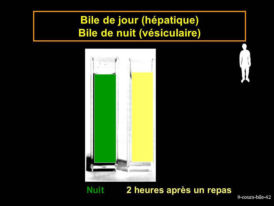 9-cours-bile-42 Bile de jour (hépatique) Bile de nuit (vésiculaire) Nuit2 heures après un repas