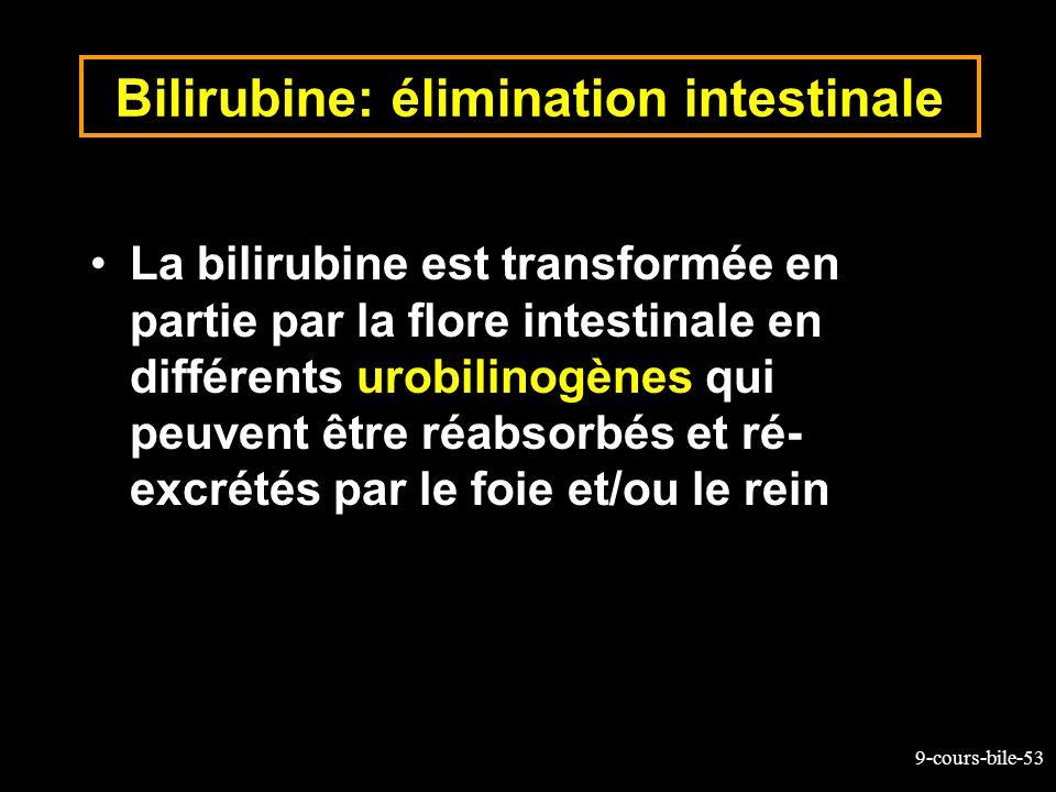 9-cours-bile-53 Bilirubine: élimination intestinale La bilirubine est transformée en partie par la flore intestinale en différents urobilinogènes qui
