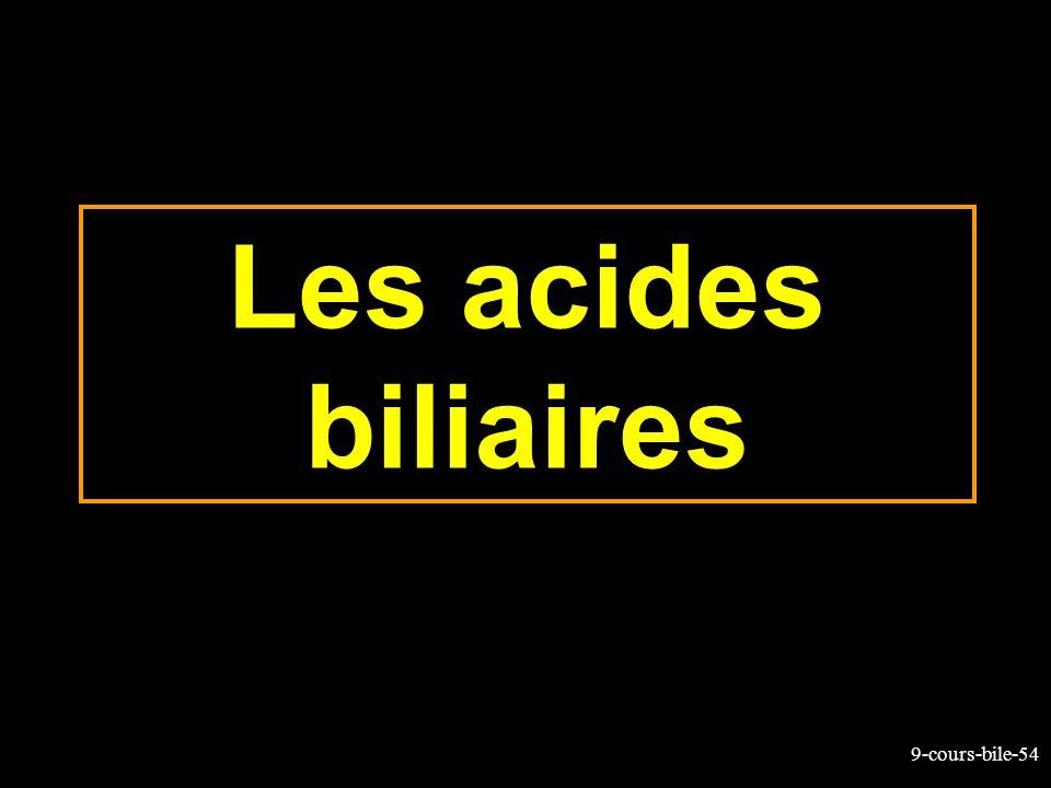 9-cours-bile-54 Les acides biliaires