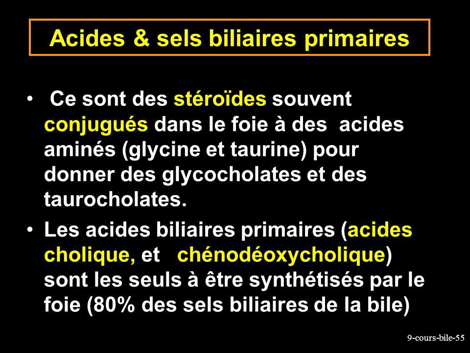 9-cours-bile-55 Acides & sels biliaires primaires Ce sont des stéroïdes souvent conjugués dans le foie à des acides aminés (glycine et taurine) pour d
