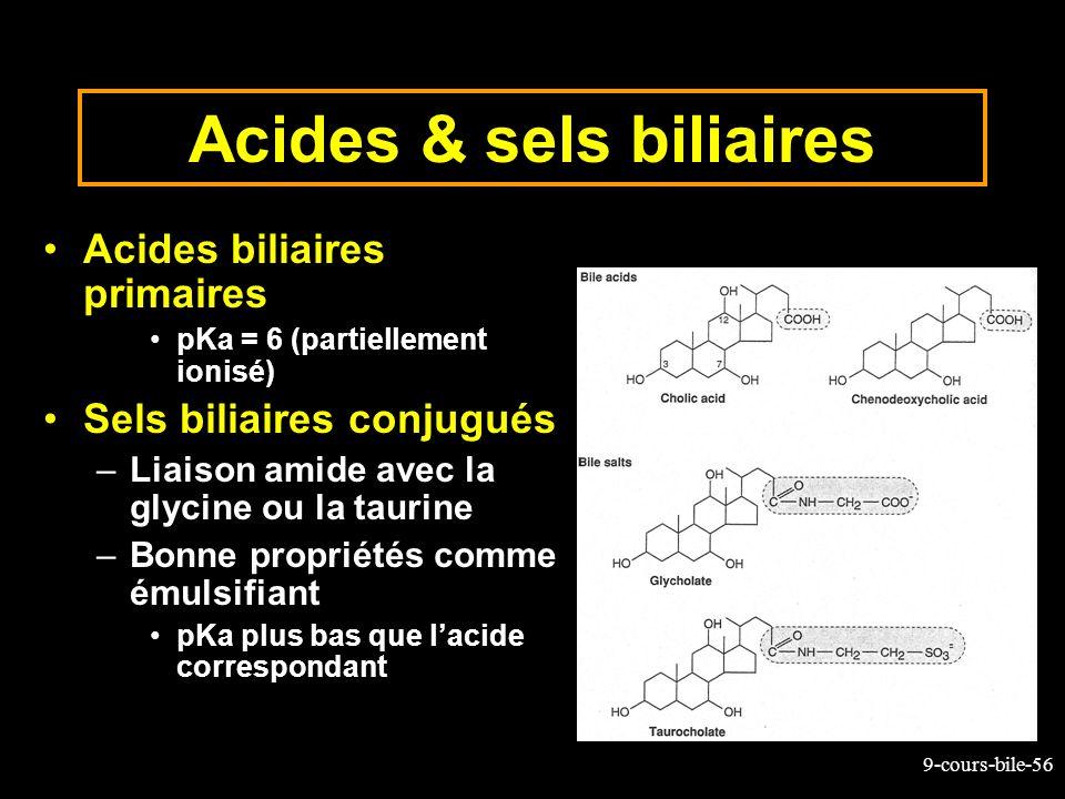 9-cours-bile-56 Acides & sels biliaires Acides biliaires primaires pKa = 6 (partiellement ionisé) Sels biliaires conjugués –Liaison amide avec la glyc