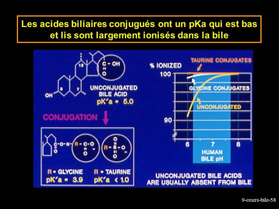 9-cours-bile-58 Les acides biliaires conjugués ont un pKa qui est bas et lis sont largement ionisés dans la bile