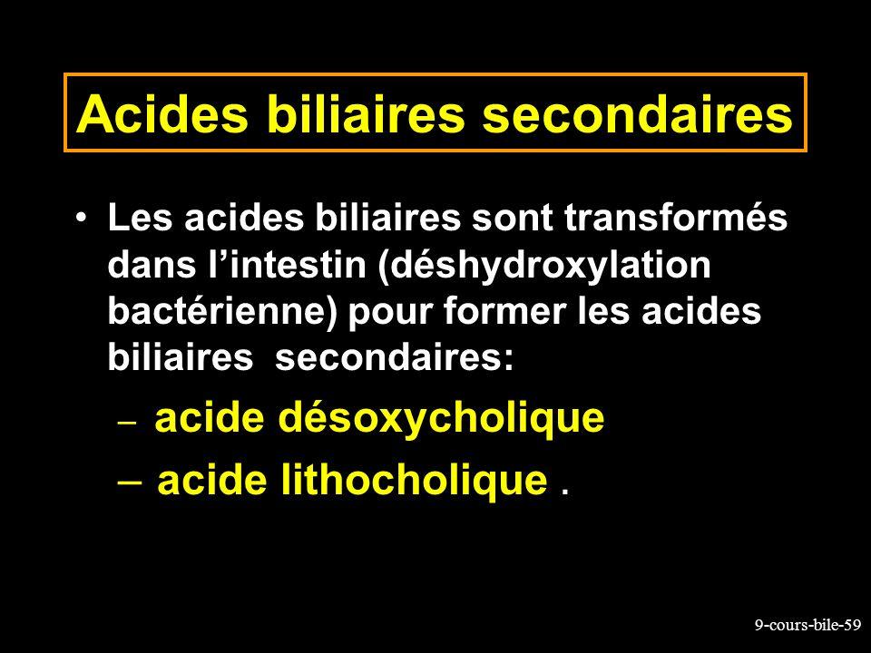 9-cours-bile-59 Acides biliaires secondaires Les acides biliaires sont transformés dans lintestin (déshydroxylation bactérienne) pour former les acide