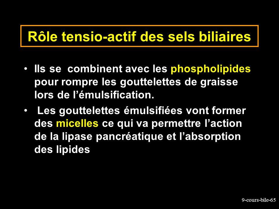 9-cours-bile-65 Rôle tensio-actif des sels biliaires Ils se combinent avec les phospholipides pour rompre les gouttelettes de graisse lors de lémulsif