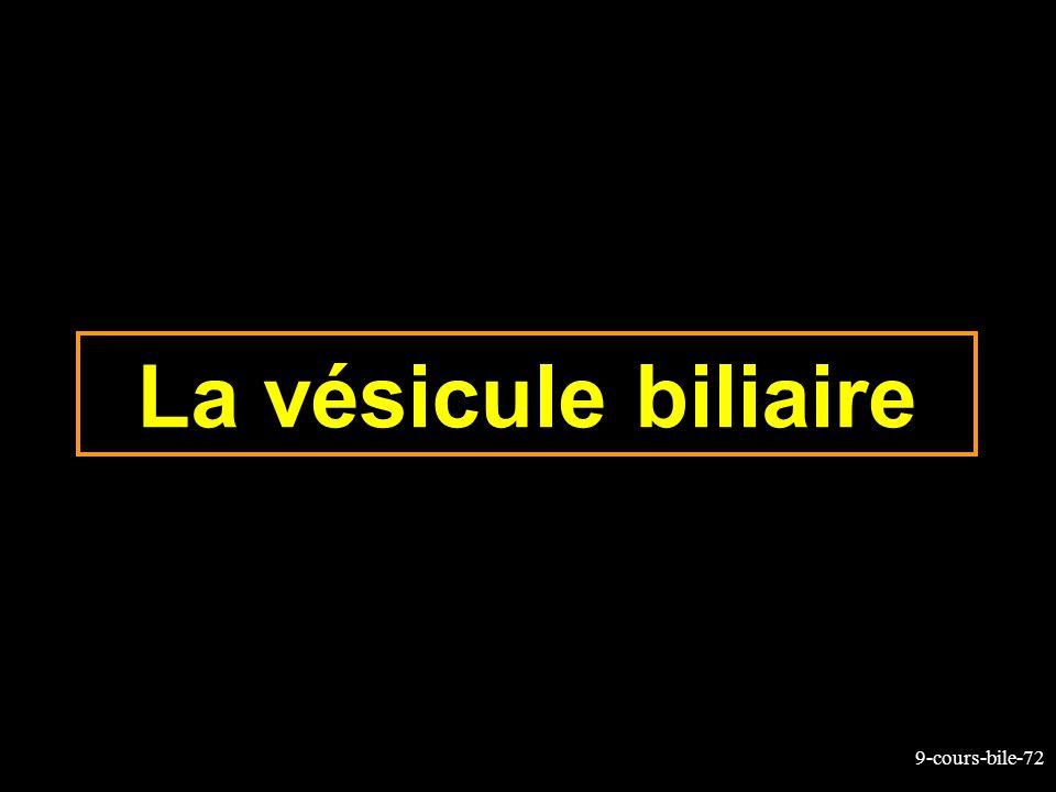 9-cours-bile-72 La vésicule biliaire
