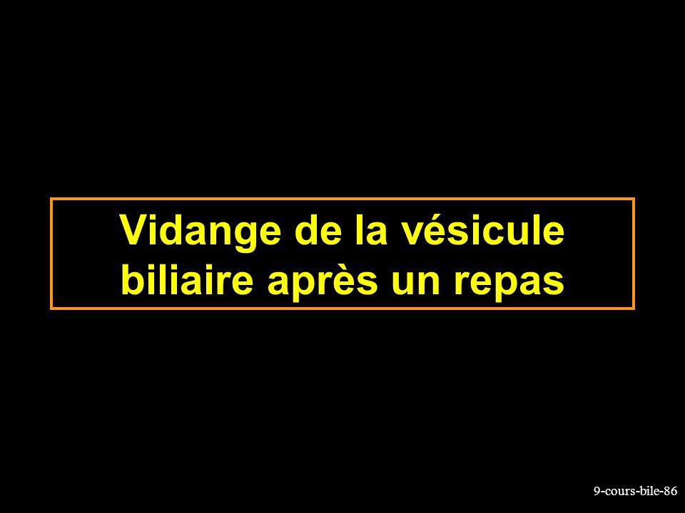 9-cours-bile-86 Vidange de la vésicule biliaire après un repas