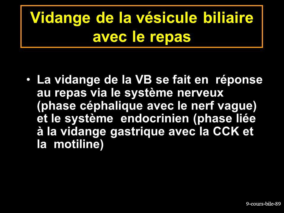 9-cours-bile-89 Vidange de la vésicule biliaire avec le repas La vidange de la VB se fait en réponse au repas via le système nerveux (phase céphalique