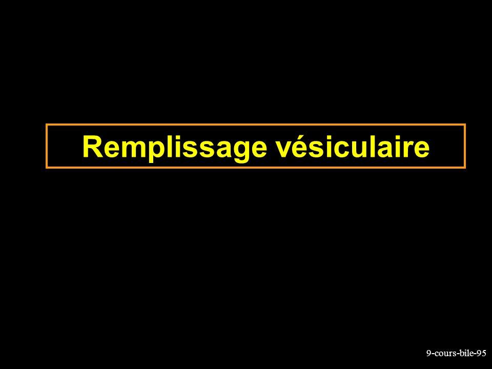 9-cours-bile-95 Remplissage vésiculaire