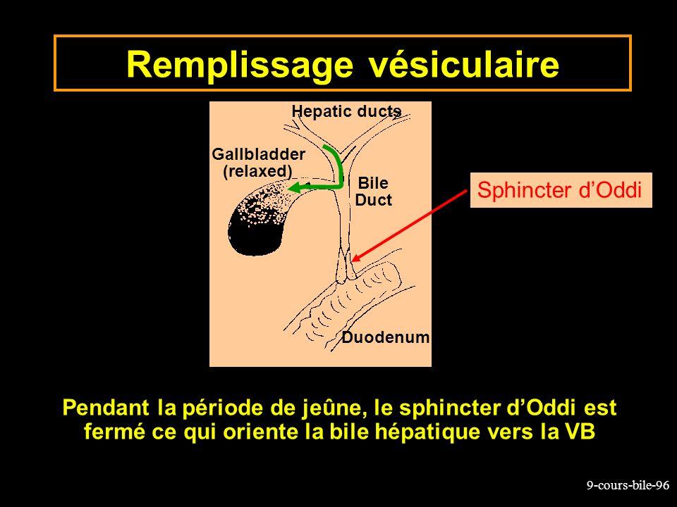 9-cours-bile-96 Remplissage vésiculaire Pendant la période de jeûne, le sphincter dOddi est fermé ce qui oriente la bile hépatique vers la VB Hepatic