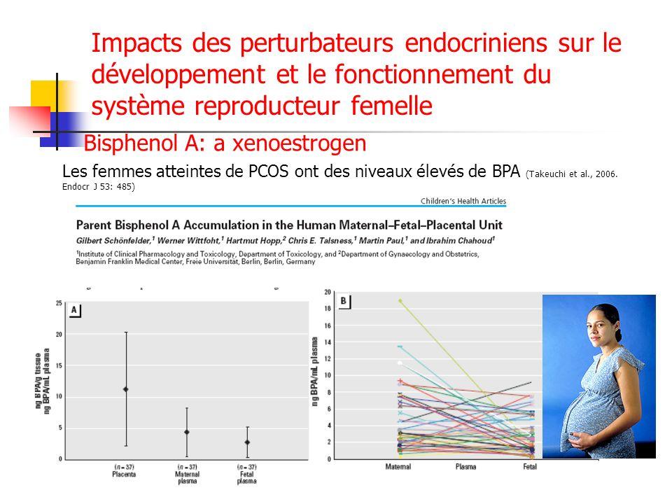 Impacts des perturbateurs endocriniens sur le développement et le fonctionnement du système reproducteur femelle Bisphenol A: a xenoestrogen Les femme