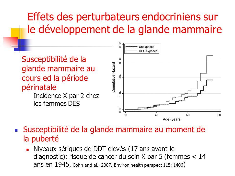 Effets des perturbateurs endocriniens sur le développement de la glande mammaire Susceptibilité de la glande mammaire au moment de la puberté Niveaux