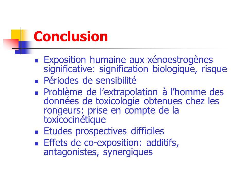 Conclusion Exposition humaine aux xénoestrogènes significative: signification biologique, risque Périodes de sensibilité Problème de lextrapolation à