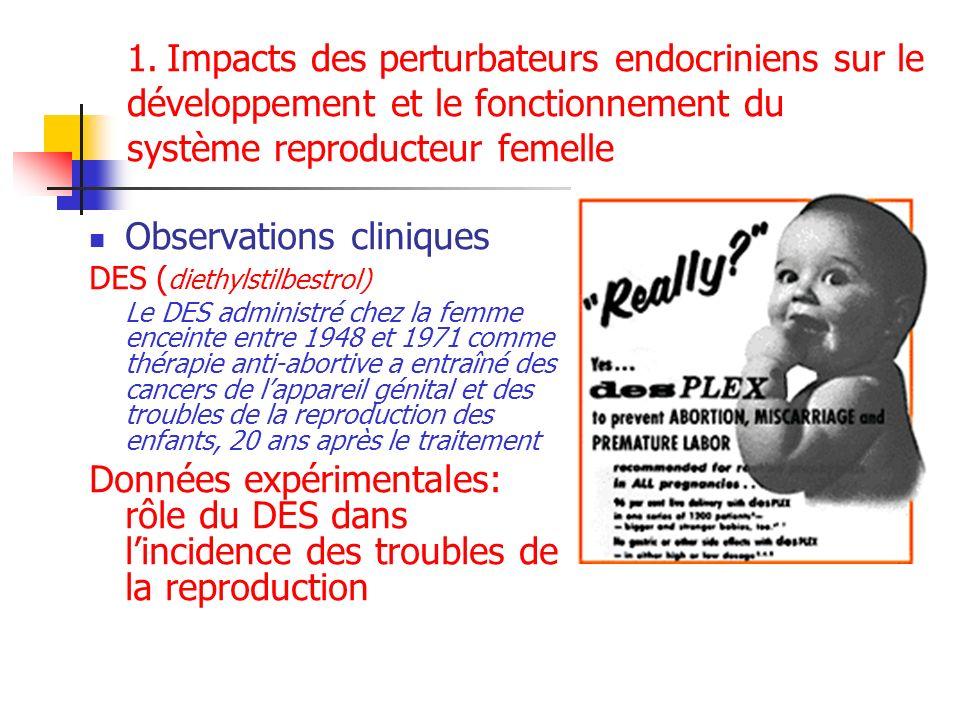 1. Impacts des perturbateurs endocriniens sur le développement et le fonctionnement du système reproducteur femelle Observations cliniques DES ( dieth