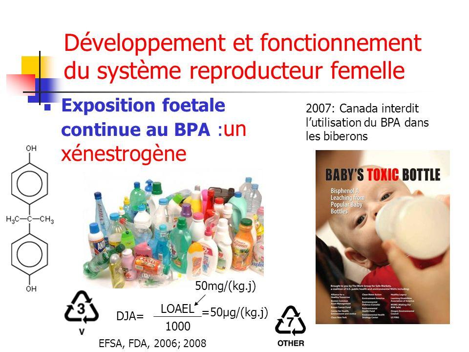 Développement et fonctionnement du système reproducteur femelle Exposition foetale continue au BPA : un xénestrogène 2007: Canada interdit lutilisatio