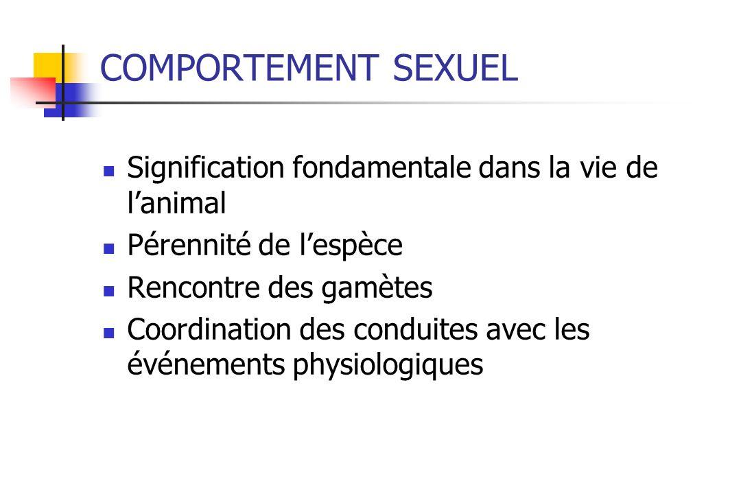 COMPORTEMENT SEXUEL Signification fondamentale dans la vie de lanimal Pérennité de lespèce Rencontre des gamètes Coordination des conduites avec les é