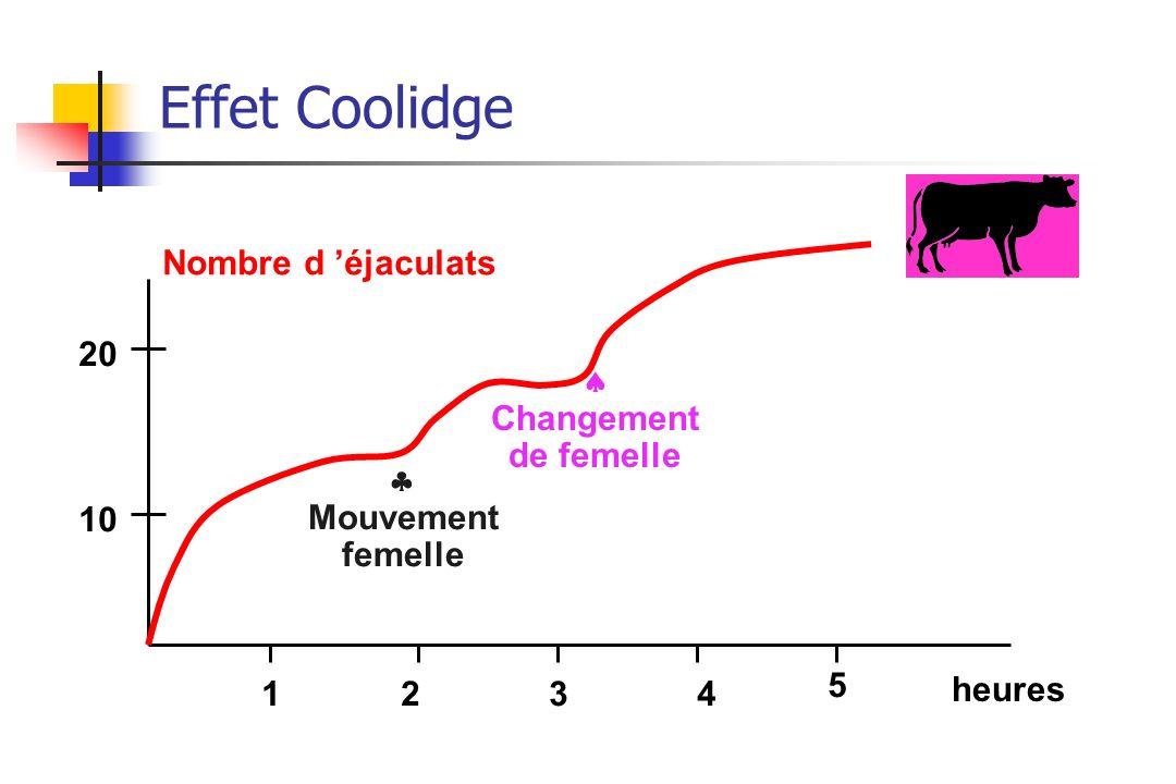 Effet Coolidge Nombre d éjaculats 10 20 1234 5 heures Mouvement femelle Changement de femelle