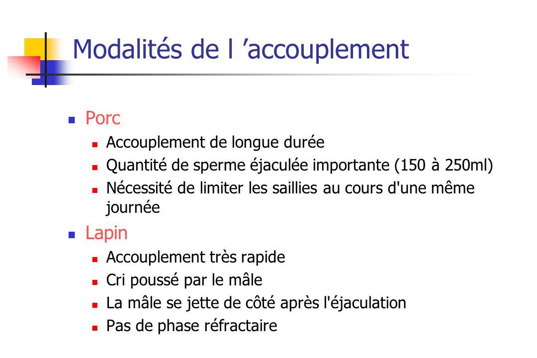 Modalités de l accouplement Porc Accouplement de longue durée Quantité de sperme éjaculée importante (150 à 250ml) Nécessité de limiter les saillies a